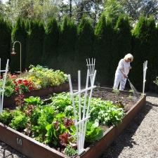 Quail Run Gardens