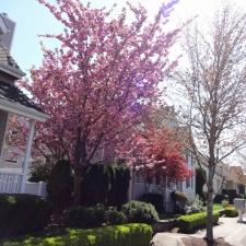 Spring at Quail Run